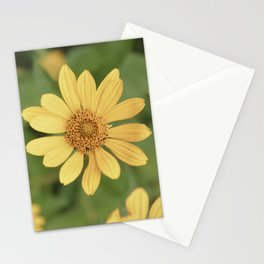 Beautiful Yellow Vintage Flower Stationery Cards