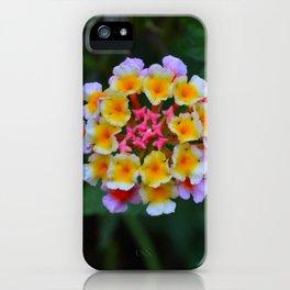 Lantana I iPhone Case