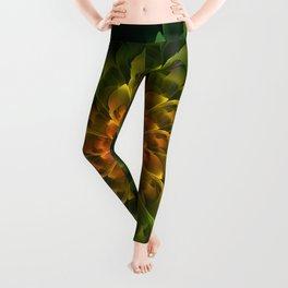 Beautiful Orange-Green Desert BarrelCactus Spiral Leggings