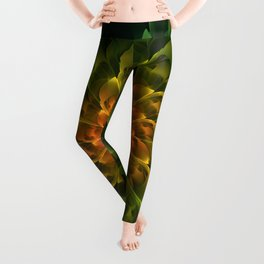 Beautiful Orange-Green Desert BarrelCactus Spiral Leggings