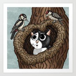 Woodpecker Cavity Art Print