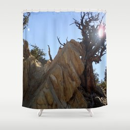Tree leaning on rock Shower Curtain