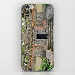 Vizcaya : Secret Coral Gardens iPhone Skin