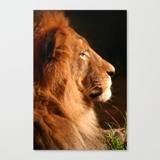 Pretty Kitty Canvas Print