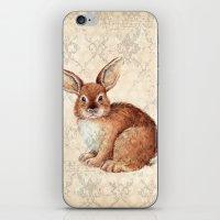 rabbit iPhone & iPod Skins featuring Rabbit by Patrizia Ambrosini