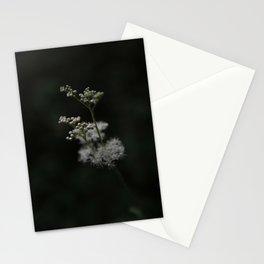 Summer Night Dream Stationery Cards