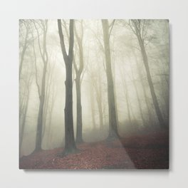 forest in fog Metal Print