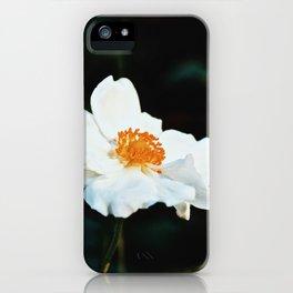 November Rose iPhone Case