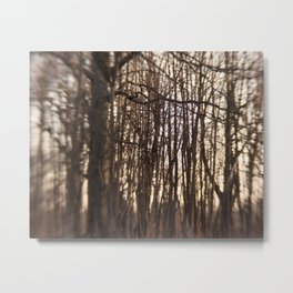 The Forest Metal Print