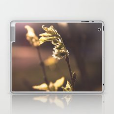 The First Sign of Spring Laptop & iPad Skin