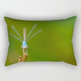 Dragon Noms Rectangular Pillow