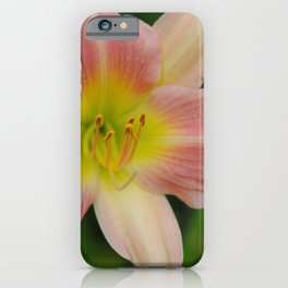 Peaches and Cream Lily iPhone Case