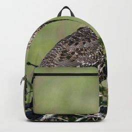 Watercolor Bird, Spruce Grouse 05, Cape Breton, Nova Scotia, Canada, Tucked Between Trees Backpack