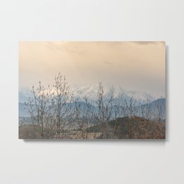 Snowy mountains through the trees Metal Print