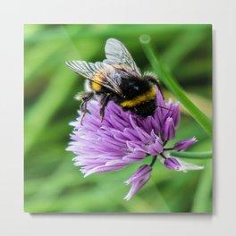 Bee Chive Metal Print