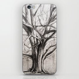 Tree in the Park iPhone Skin
