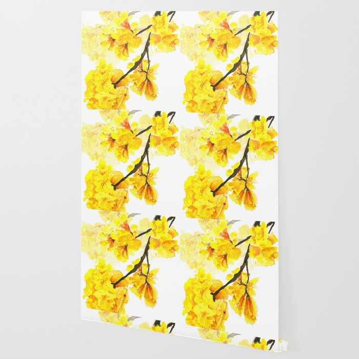 yellow trumpet trees watercolor yellow roble flowers yellow Tabebuia Wallpaper