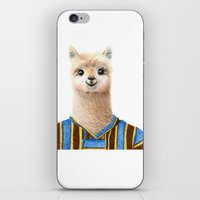 alpaca iPhone & iPod Skins featuring Alpaca by Jenna Caire