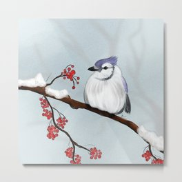 Fluff up in the cold Metal Print