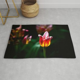 Colorful Decorative Tulip Rug