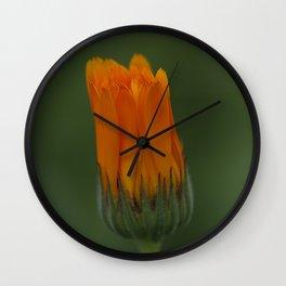 Marigold flower 3 Wall Clock