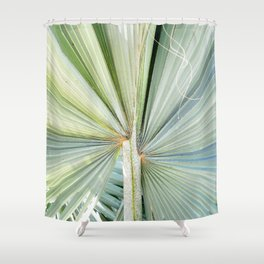 Fanned Palms Shower Curtain
