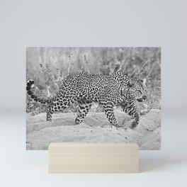Prowling Leopard Mini Art Print