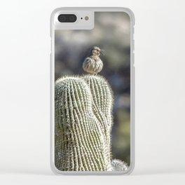 """Desert Curve-Bill"" by Murray Bolesta Clear iPhone Case"