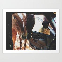Car Horses Kunstdrucke