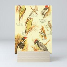 William Playne Pycraft - A Book of Birds (1908) - Plate 23: Woodpeckers Mini Art Print