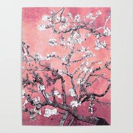 Van Gogh Almond Blossoms : Peachy Pink Poster