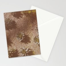 Succulents Caught on Film Stationery Cards