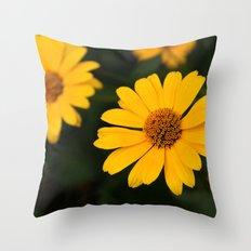 Sunny Daisy Throw Pillow