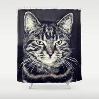 austin Shower Curtains featuring Austin by Rachel's Pet Portraits