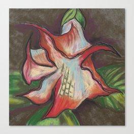 Brugmansia Canvas Print