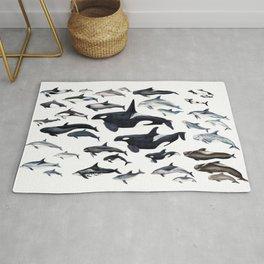 Dolphin diversity Rug