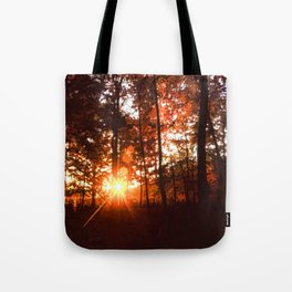 Dawn in the Woods Tote Bag
