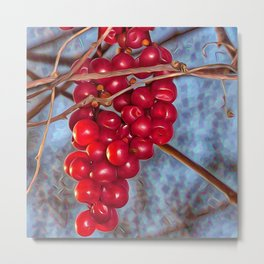 Grapes Schisandra autumn Metal Print