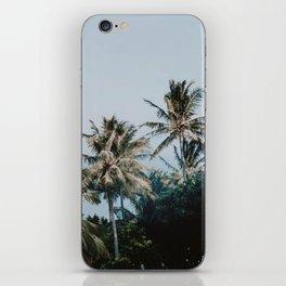 palm trees xv / phi phi islands, thailand iPhone Skin