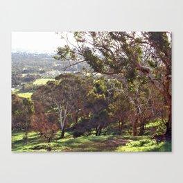 Swan Valley Perth Western Australia Canvas Print