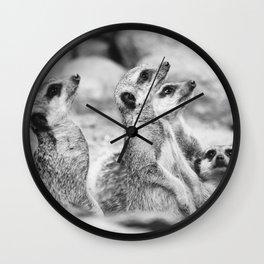 Black and White Meerkats Wall Clock