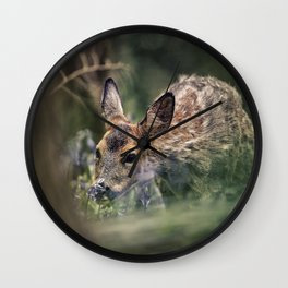 Roe Deer in Bluebell Wood Wall Clock