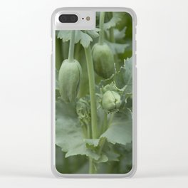 Waiting for the sun Clear iPhone Case