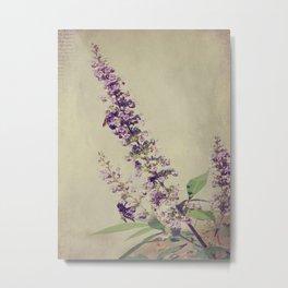 Texas Lilac and Bees Metal Print