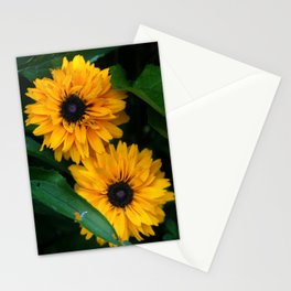 Susan's Flowers Stationery Cards
