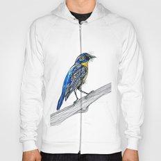Bird Inspiration: Tickell's Blue Flycatcher Hoody