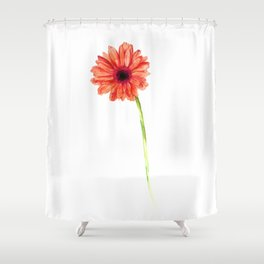 Red Gerbera Shower Curtain