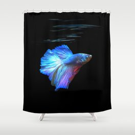 Thai Fighting Fish Shower Curtain
