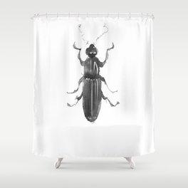 Dhysores quadriimpressus Shower Curtain