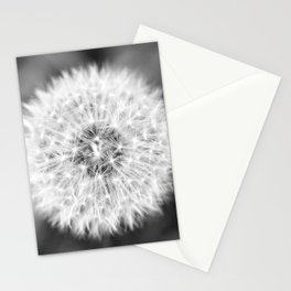 Black & White Dandelion Stationery Cards